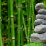 Piękny oraz ładny zieleniec to zasługa wielu godzin spędzonych  w jego zaciszu w trakcie pielegnacji.